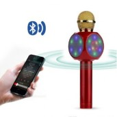 WS1816 Wireless Bluetooth Karaoke