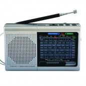 Portable Bluetooth FM/AM Radio